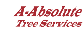 A Absolute Tree Service - Serving Tampa Bay Florida